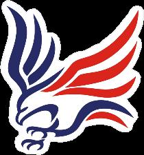 American Flag Flying Eagle Sticker