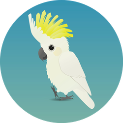An Illustration Of A Cute Sulphur-crested Cockatoo Sticker