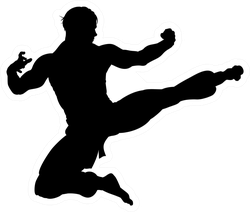 An Illustration Of Karate Or Kung Fu Sticker