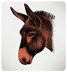 Animal Donkey, Hand-drawing Sticker