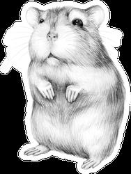 Animal Sketch Cute Little Hamster Standing Sticker