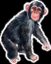 Ape Monkey Colorful Watercolor Sticker