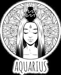 Aquarius Artwork Sticker