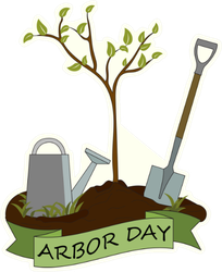Arbor Day Tree Sapling Sticker