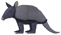 Armadillos (Litter Armored One) Sticker