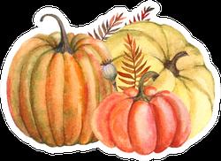Autumn Composition Of Yellow And Orange Pumpkins Sticker