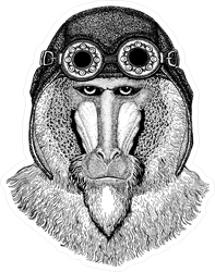 Baboon Wearing Motorcycle Helmet Sticker
