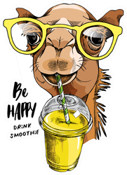Be Happy Drink Smoothie Funny Camel Sticker