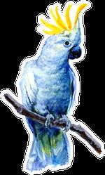 Beautiful Cockatoo Watercolor Painting Sticker