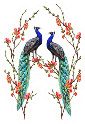 Beautiful Floral Illustration With Peacock Pair Sticker