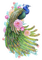 Beautiful Peacock And Peony Flowers Watercolor Sticker