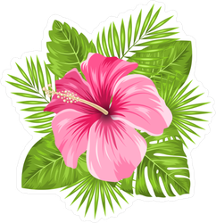Beautiful Pink Hibiscus Flowers Blossom and Leaves Sticker