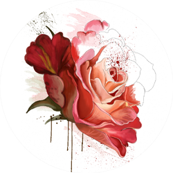 Beautiful Rose, Watercolor Paint Dripping Sticker
