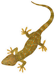 Beautiful Tokay Gecko Lizard Sticker