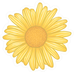 Beautiful Yellow Daisy Flower Sticker