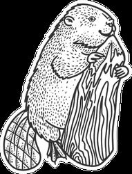 Beaver And Tree Sketch Illustration Sticker