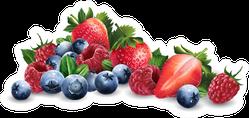 Berry Pile Sticker