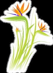 Bird Of Paradise Flower Plant Sticker