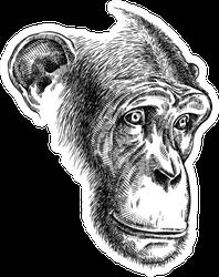 Black And White Ape Illustration Sticker