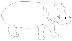 Black And White Cute Outline Hippo Sticker