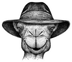 Black And White Engrave Isolated Camel Illustration Sticker