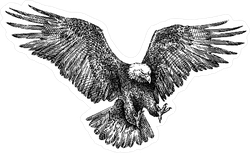 Black And White Engraved Style Eagle Sticker