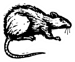 Black And White Illustration Of A Rat Sticker