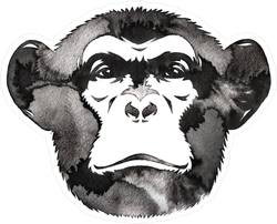 Black And White Water And Ink Monkey Sticker