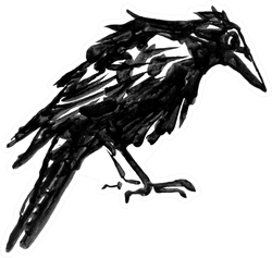 Black Crow Isolated On White Drawn Ink Sticker