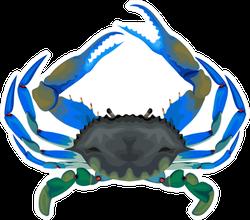 Blue Crab Illustration Sticker
