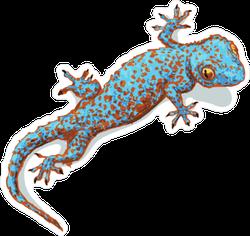 Blue Gecko Looking Up Sticker