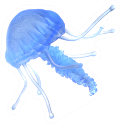 Blue Jellyfish Isolated On The White Sticker