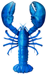 Blue Lobster Isolated On A White Sticker