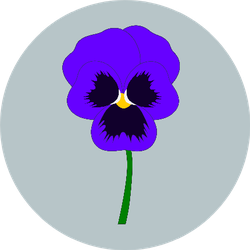 Blue Pansy Isolated On Simple Background Sticker