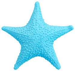 Blue Starfish Isolated On White Sticker