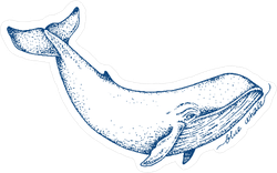 Blue Whale Ink Sketch Sticker