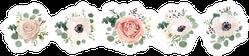 Bohemian Flower Set Sticker