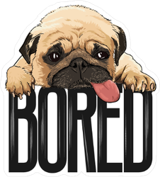Bored Pug Dog Sticker