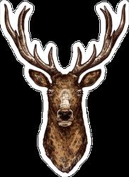 Brown Deer Head Sticker