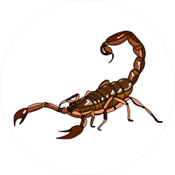 Brown Scorpion Illustration Sticker