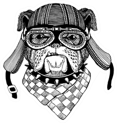 Bulldog Wild Biker Animal Wearing Motorcycle Helmet Sticker