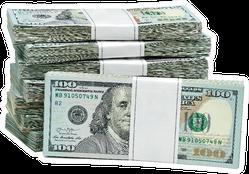 Bundles of 100 Dollar Bills Sticker