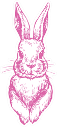 Bunny Cute Rabbit Animal Ink Pink Sticker
