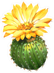 Cactus Bulb with Large Yellow Flower Sticker