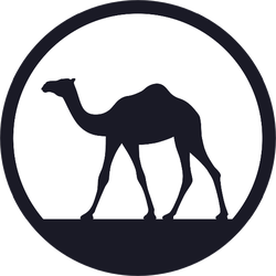 Camel In Desert Walking Forward At Sunrise Sticker