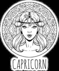 Capricorn Artwork Sticker