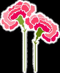 Carnation Flowers Abstract Art Sticker