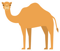 Cartoon Camel In Flat Style On White Background Sticker