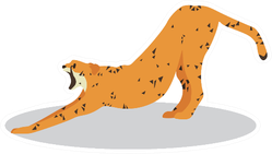 Cartoon Cheetah Stretching Back Sticker