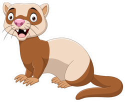 Cartoon Funny Ferret Big Eyes Sticker